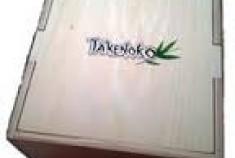 Takenoko géant: