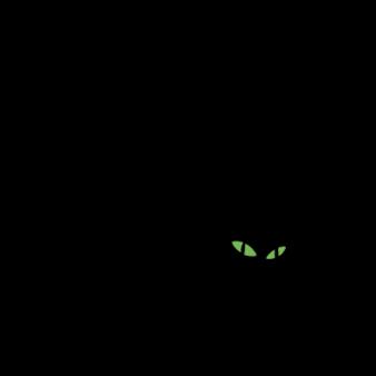 blackcat133