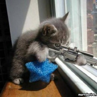 snipercatz