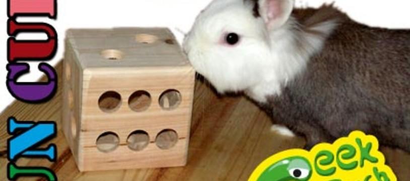 Faites jouer vos lapins