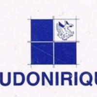 Ludonirique